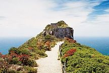 Cape Town Home & Coffee Shop / A perfect Home & a perfect Business in the Beautiful Cape of RSA