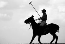 "The Sport of Kings / St. Regis has supported polo, ""the sport of kings"" since the foundation of the brand and still does to this day around the world.  / by St. Regis Hotels & Resorts"
