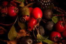 Berry inspired / by Echo Autumn