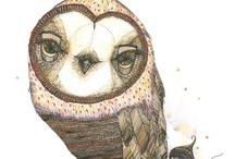 owls... / by Jacquie Jeffery