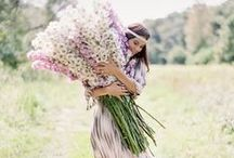 Plants + Flowers