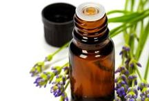 Essential Oil Recipes & Staying Healthy / Staying healthy can be a challenge. Equip your immune system and keep a clean healthy environment with these ideas for staying healthy and essential oil recipes.