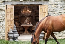 d e c o r . e q u e s t r i a n / 'the enduring tradition of an equestrian lifestyle begins with a basic love of horses.....'