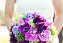 Wedding Ideas / by Linda Meirose