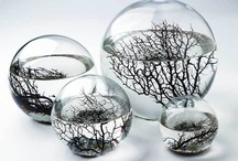 Spheres / There's something about spheres that mesmerizes me... / by Janet Boyer