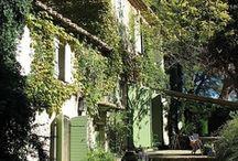 garden / by rubyellen bratcher // cakies