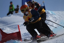 Ski Cross 2013 / by Asessippi Ski Area & Resort