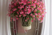 door decor/wreaths/baskets / by Elizabeth A