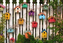 Birdhouses Galore / by Cindy Kimpel