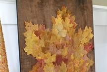 Fall / by Samantha Moulder