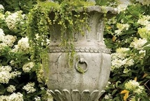 garden urns/containers / by Elizabeth A