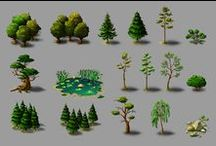 KoRu Project - Forest Elements / KoRo Project Research