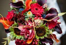 wedding colors / by Nish Malvea