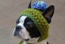 Crochet-Pets