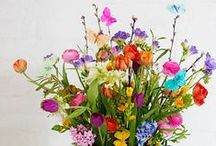 Spring Has Sprung / Flowers and decor for the spring season! / by Katie WellnessMama