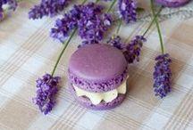 Macarons / by Reeniebeth N