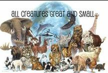 All creatures great and small / by Kathy Fulkerson