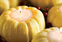 Decorating with Pumpkins (including DIY's) / by Krisztina Williams  I  life + style