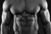 _Anatomy • Poses