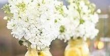 DeCoR:  Arranjos Florais
