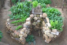 Garden Innovation, Inspiration & Knowhow / by Ecohome