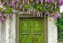 Home - DREAM / by Sarong Goddess Vicki Skinner
