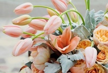 Fleurs & Fauna / The best of bouquets and flowers