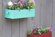 Gardening / Flower decor & gardening