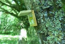 Forêt de Marcheval / Faites le tour de la forêt de Marcheval ...