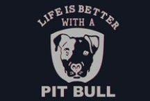 Pit bull lover / by Natisha Moffitt