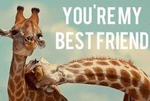 Best Friend. / by Laura Parisi