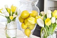 Preparing for Spring / From spring cleaning to spring-inspired decor -- some tips and tricks to prep your home for Spring.