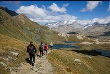 Guiding groups on mountains / Discover all my trekking and hiking around the north west italian alps. If you want to discover and hike these fantastic mountains contact me!