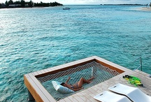 Future Vacation Homes