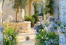 Garden / by Crystan Taylor