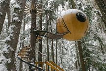 Treehouses / by Green Rainbow Revolution (GRRrrr!)