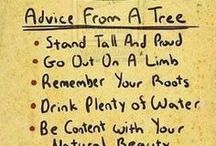 Advice from.... / by Rhonda Sandoval