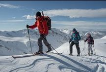 Ski Tours / Endurance Touring. Adventure Touring. Freeride Touring.