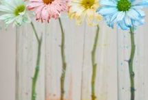Kids' Science Activities / Easy and Cool Science Experiments to do with your young kids! Weather science, plant science, color science, and more!