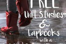 Preschool Unit Studies / Interest Based learning: Follow our collection of Unit Study Ideas for Preschoolers!