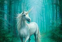 Faeries, Unicorns, and Such