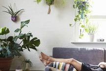 Dream Home / by umbilical shop