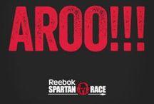 For Spartan race 2015 Motivation