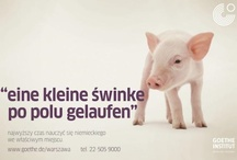 leniva° campaign for Goethe-Institut / campaign for Goethe-Institut Warsaw September 2012