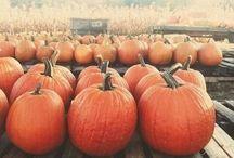 Fall is my favorite. / by Marissa Garrison