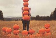 autumn, fall, thanksgiving