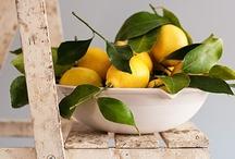 Fruits N Veggies / by Valerie Berstecher