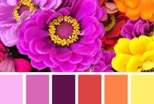 Fave Palettes / by Valerie Berstecher