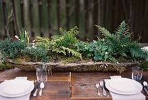 Wedding Themes Woodland / Woodland Ferns and Wood Wedding Inspiration - a perfect match to my Woodland range of wedding stationery http://www.knotsandkisses.co.uk/product-category/vintage-collection/woodland/