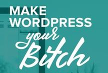 Make WordPress Your Bitch / Useful tips for dominating WordPress like a boss.